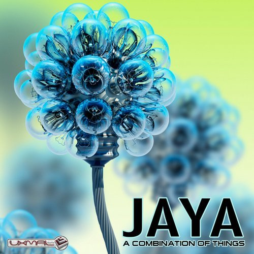 Jaya A Combination of Things